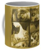 Wondering 3 Coffee Mug by Angelina Vick