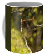 Wonky Eyed Tiger Coffee Mug