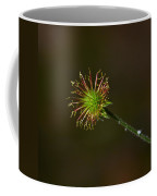 Wood Avens Coffee Mug