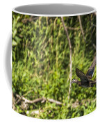 Wood Duck In Flight Coffee Mug