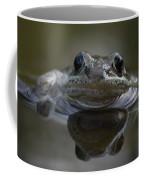 Wood Frog  Rana Sylvatica Coffee Mug