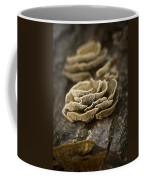 Wood Shrooms Coffee Mug