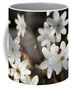 Woodland Flora And Friend Coffee Mug