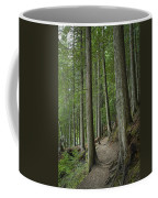 Woodland Forest Path Coffee Mug