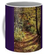Woodland Path, Mount Stewart, Ards Coffee Mug