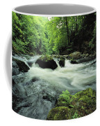 Woodland Stream And Rapids, Time Coffee Mug