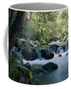 Woodland View Of A Small Creek Flowing Coffee Mug