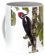 Woodpecker 1 Coffee Mug