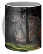 Woods - Dirt Road Photo - The Quiet Place Coffee Mug