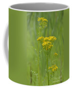 Woolly Ragwort Coffee Mug