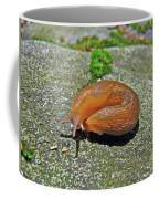 Working On My Tan - Arion Subfuscus Slug Coffee Mug