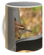 Wren Peeking Out Coffee Mug