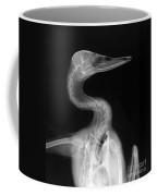 X-ray Of A Mallard Duck Head Coffee Mug