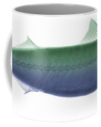 X-ray Of An Atlantic Mackerel Coffee Mug