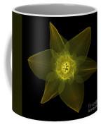 X-ray Of Daffodil Flower Coffee Mug