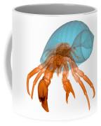 X-ray Of Hermit Crab Coffee Mug