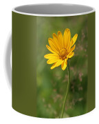 Yellow Aster Coffee Mug