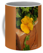 Yellow Blossom On Planter Coffee Mug