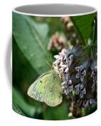 Yellow Cabbage Moth Coffee Mug