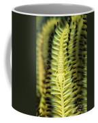 Yellow Commensal Shrimp On Crinoid Coffee Mug