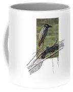 Yellow-crowned Night-heron Coffee Mug