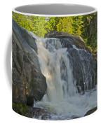Yellow Dog Falls 4192 Coffee Mug