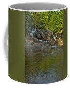 Yellow Dog Falls 4232 Coffee Mug by Michael Peychich