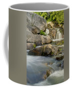 Yellow Dog Falls 4246 Coffee Mug by Michael Peychich