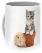 Yellow Guinea Pig And Kitten Coffee Mug