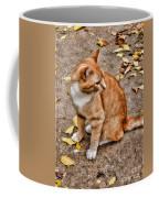 Yellow Kitty Coffee Mug