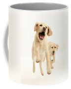 Yellow Labrador Pups Leaping And Running Coffee Mug