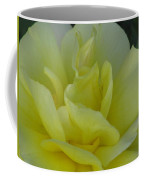 Yellow Rose 03 Coffee Mug