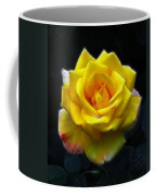 Yellow Rose In The Moonlight Coffee Mug