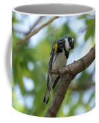 Yellow Rumped Warbler Looking Down Coffee Mug