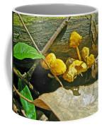 Yellow Sandpaper Mushrooms Coffee Mug