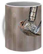Yellow-shafted Northern Flicker Feeding Coffee Mug