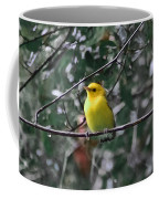 Yellow Songbird Coffee Mug