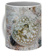 Yellow Stingray In Caribbean Sea Coffee Mug