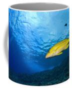 Yellowtail Snapper, Molokini Crater Coffee Mug
