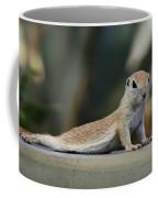 Yoga Ground Squirrel Style Coffee Mug
