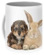 Yorkipoo Pup With Sandy Rabbit Coffee Mug