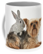 Yorkshire Terrier And Young Silver Coffee Mug