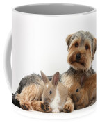 Yorkshire Terrier Dog And Baby Rabbits Coffee Mug