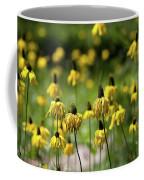 Yosemite Coneflowers Coffee Mug