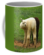 You Can't Sneak Up On Alpacas Coffee Mug