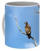 Young Bald Eagle Coffee Mug
