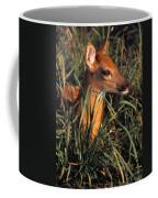 Young Deer Laying In Grass Coffee Mug