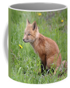 Young Fox Among The Dandelions Coffee Mug