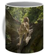 Young Lion Stalking Coffee Mug