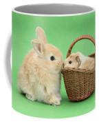 Young Rabbit With Baby Guinea Pig Coffee Mug